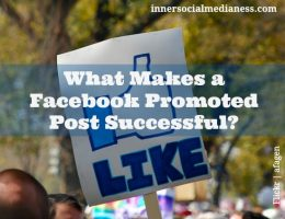What Makes a Facebook Promoted Post Successful?