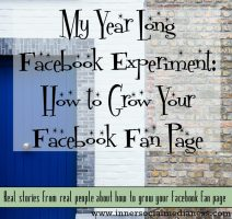 My Year Long Facebook Experiment: How to Grow Your Facebook Fan Page