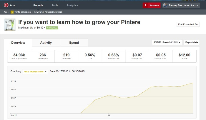 my promoted pin results